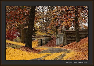 Woodland_0137_framed