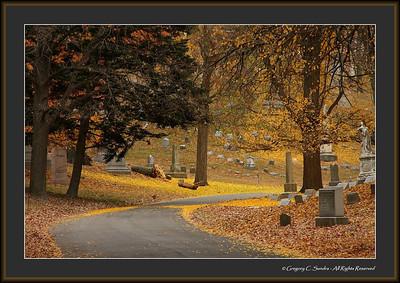 Woodland_0029_framed