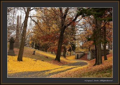 Woodland_0041_framed