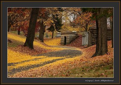 Woodland_0038_framed