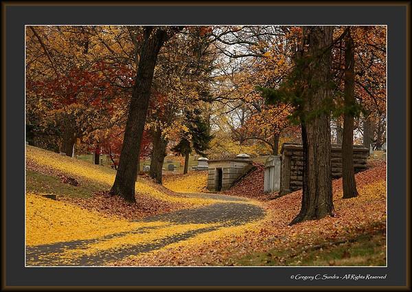 Woodland_0043_framed