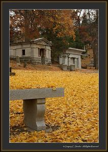 Woodland_0014_framed
