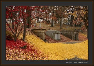 Woodland_0062_framed
