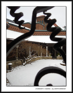 The courtyard of the Hale Cloister at the Dayton Art Institute as seen through the ornamental security bars on a window from within the galleries.